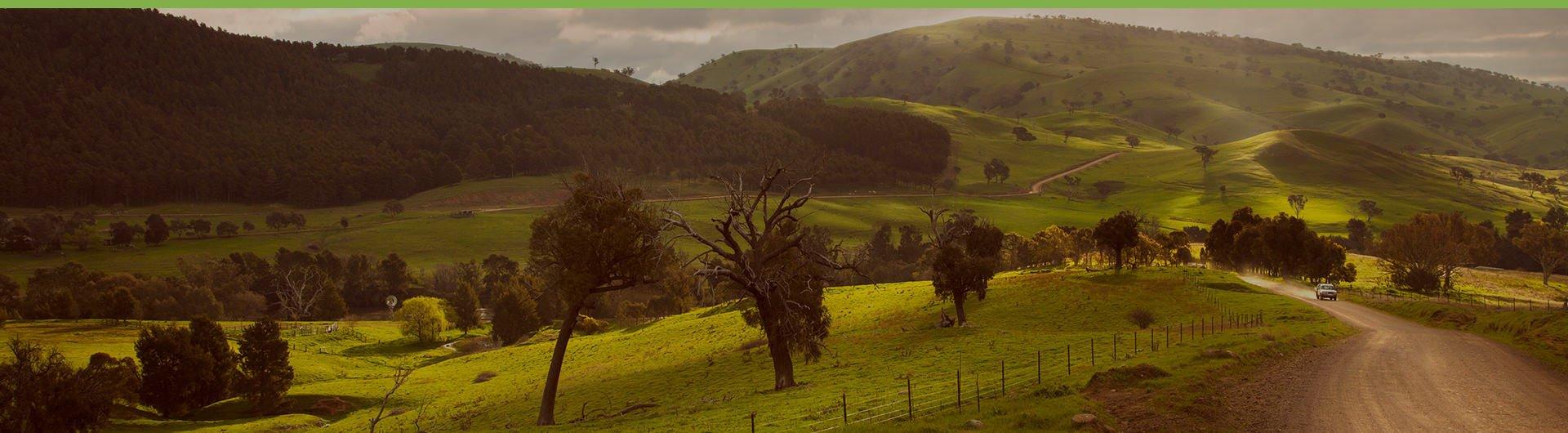 Agriculture_LP_Banner.jpg